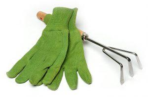 Zelene vrtne rokavice in grabljice